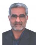 دکتر سید مهدی رحیمی